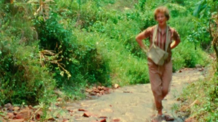 Jane: A Mãe dos Chimpanzés: Jane e sua mãe
