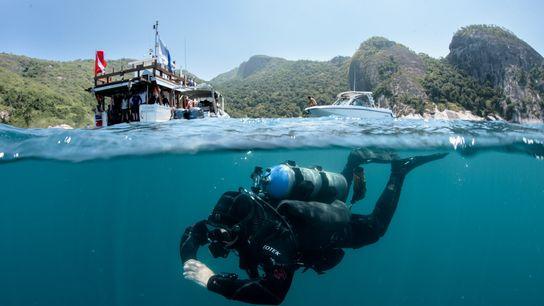 mergulho alcatrazes