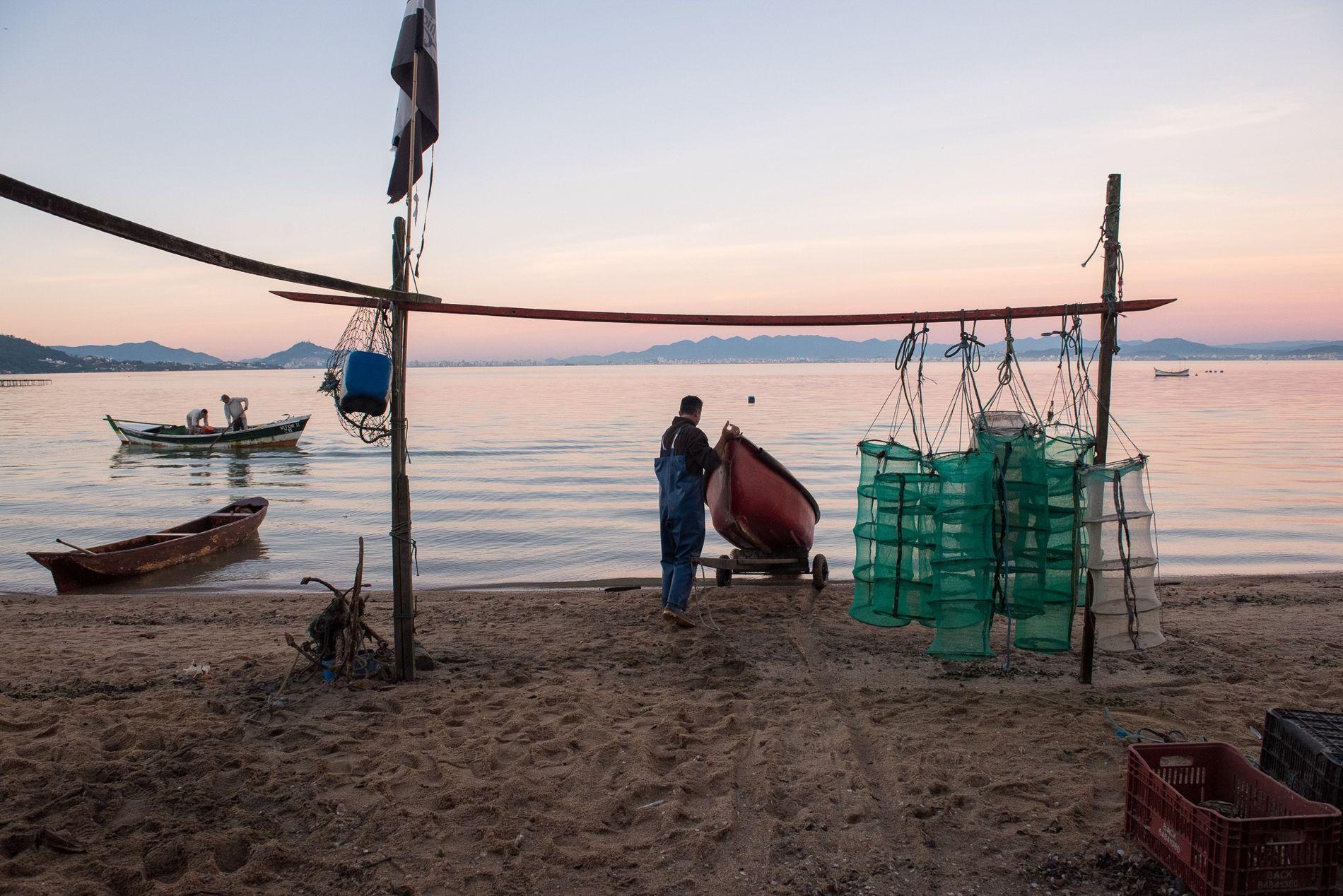 O dia começa cedo para este ostreicultor no bairro de Sambaqui, em Florianópolis (SC). A sensibilidade das ostras à alterações ambientais obriga seus criadores a manter os mares limpos.