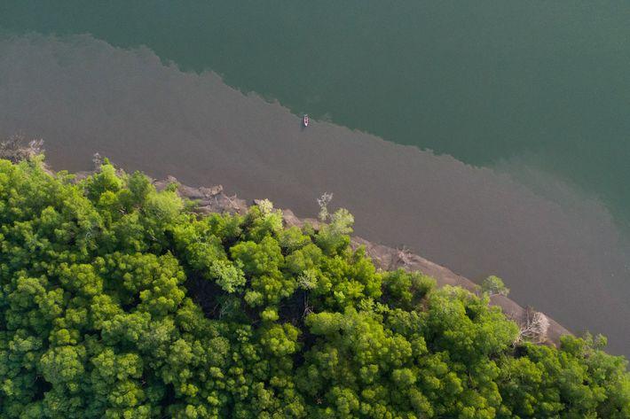 Imagem áerea mostra pequeno barco de pesca no rio Mojuim, região do Salgado Paraense.