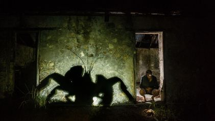 """Como um fotógrafo transformou um caranguejo-dos-coqueiros em """"Crabzilla"""""""