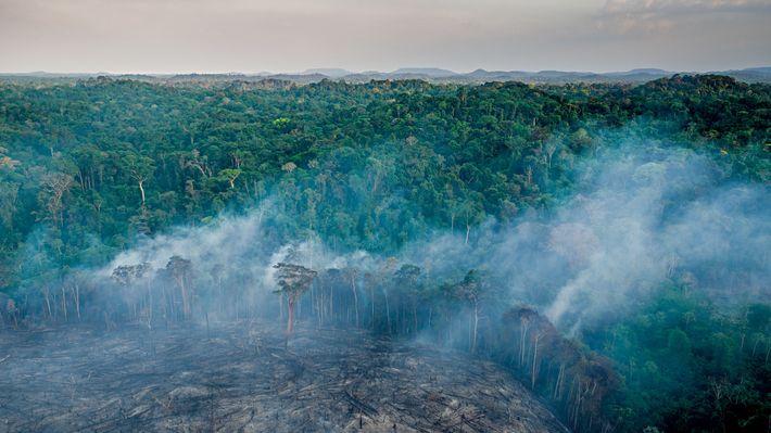 tribos-isoladas-amazonia-incendio-floresta