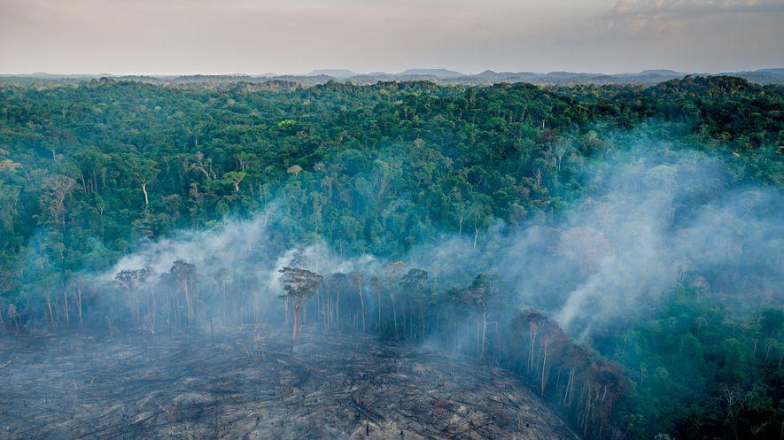 Uma queimada feita por awás assentados limpa um mandiocal na orla do Posto Juriti, no Maranhão. ...