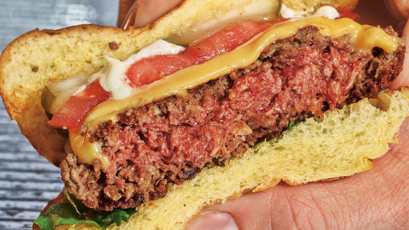 futuro da comida hamburguer