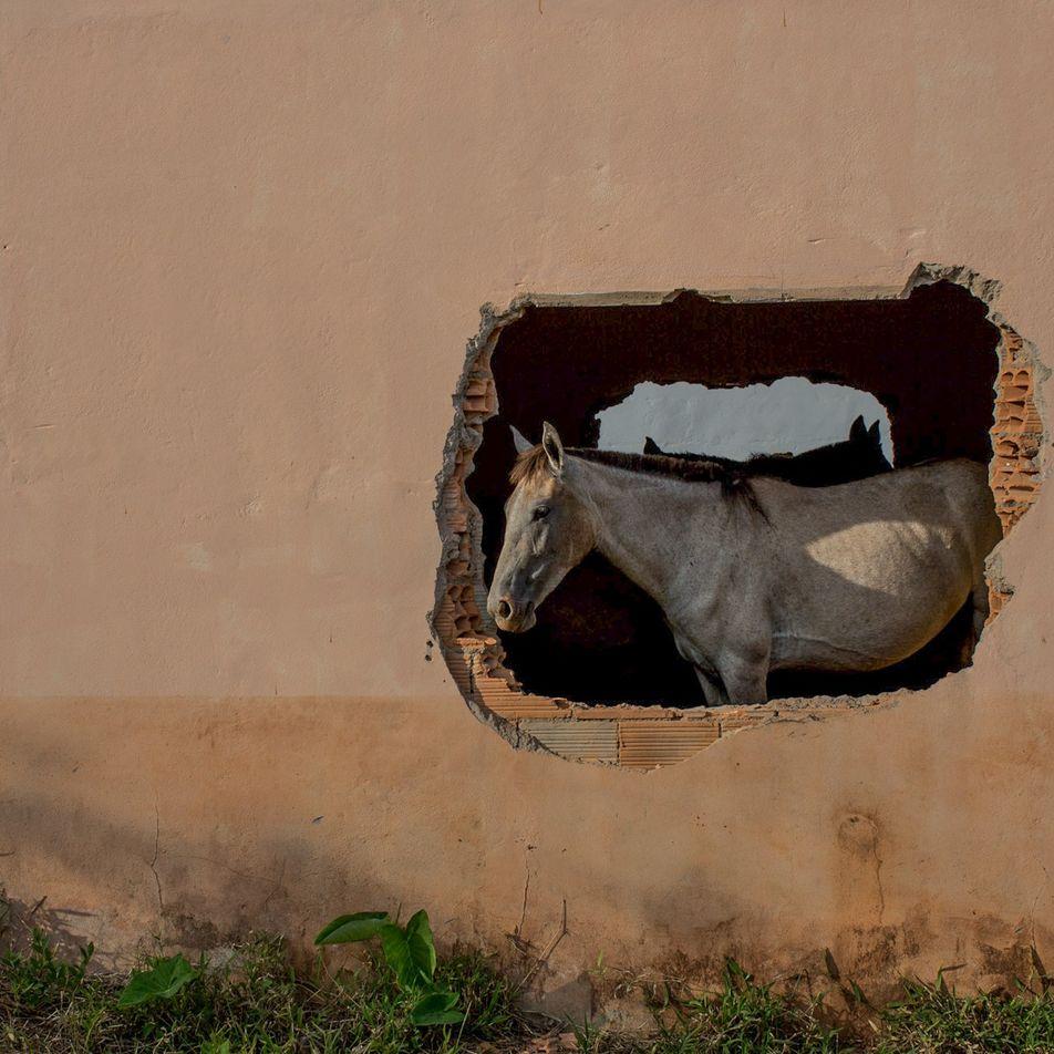 Vítimas do rompimento da barragem em Mariana ainda lutam por reparações