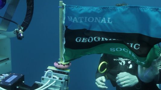 130 anos de National Geographic