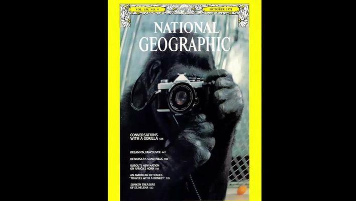 Veja 130 anos de capas da National Geographic em 2 minutos