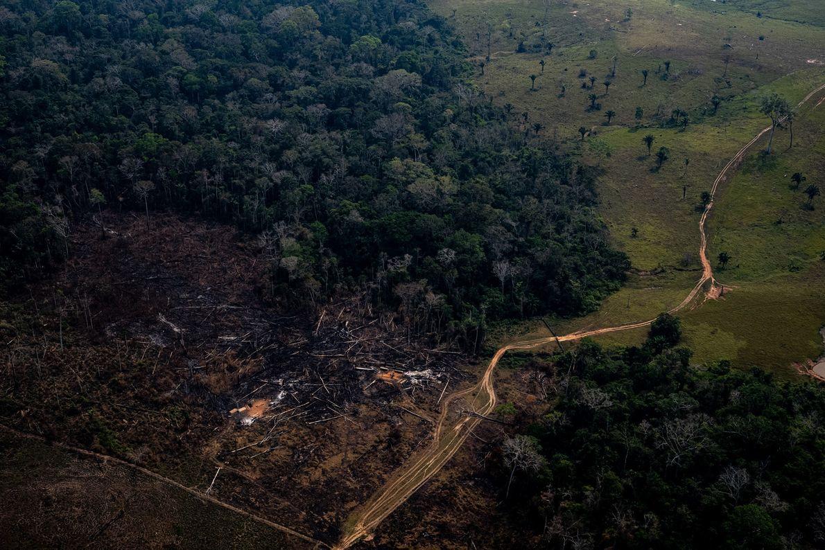 -incendio-florestal-amazonia-acre