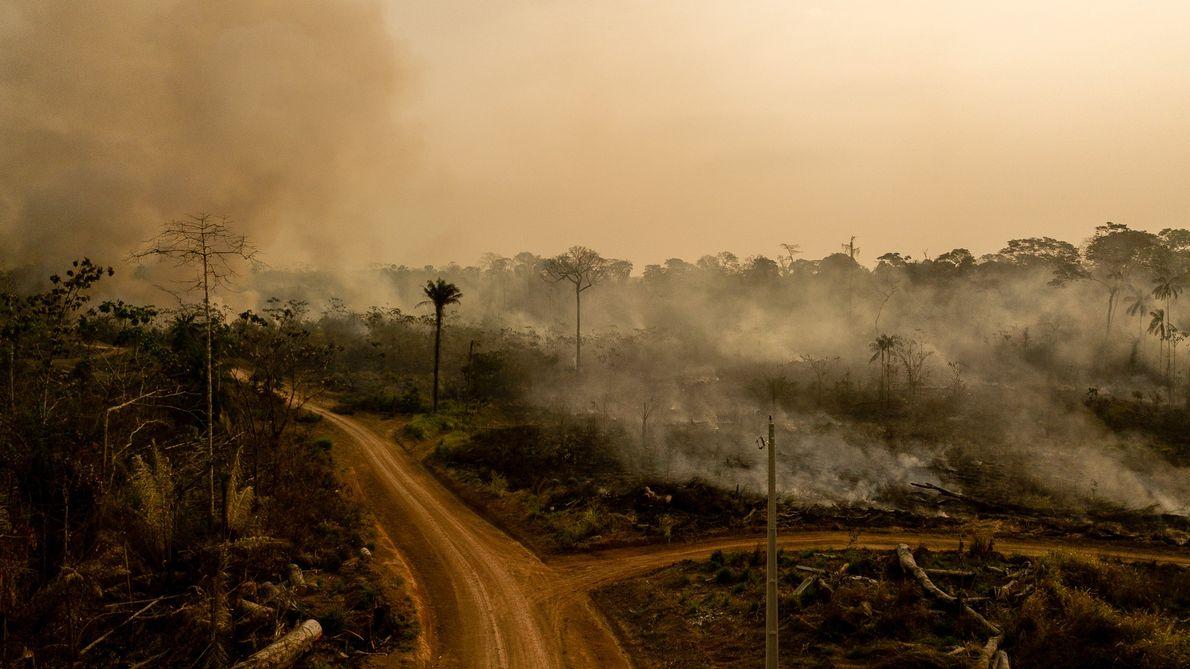 -incendio-queimadas-amazonia-acre-brasil
