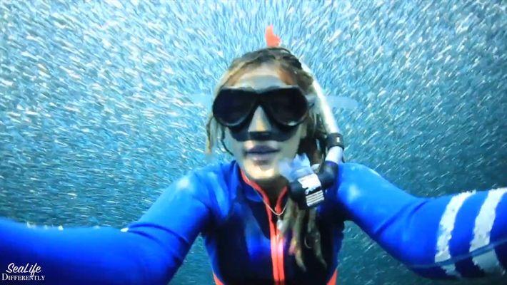 Incrível: fotógrafa mergulha entre milhares de peixes