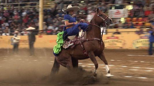 Veja o esporte mexicano que faz cavalos deslizarem no sol