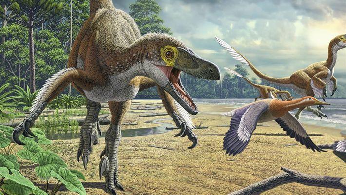 101 | Dinossauros