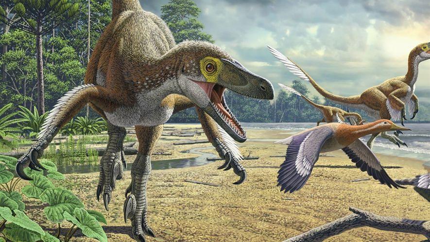 Dinossauros 101: Tudo o que você precisa saber sobre os maiores animais que já pisaram a Terra
