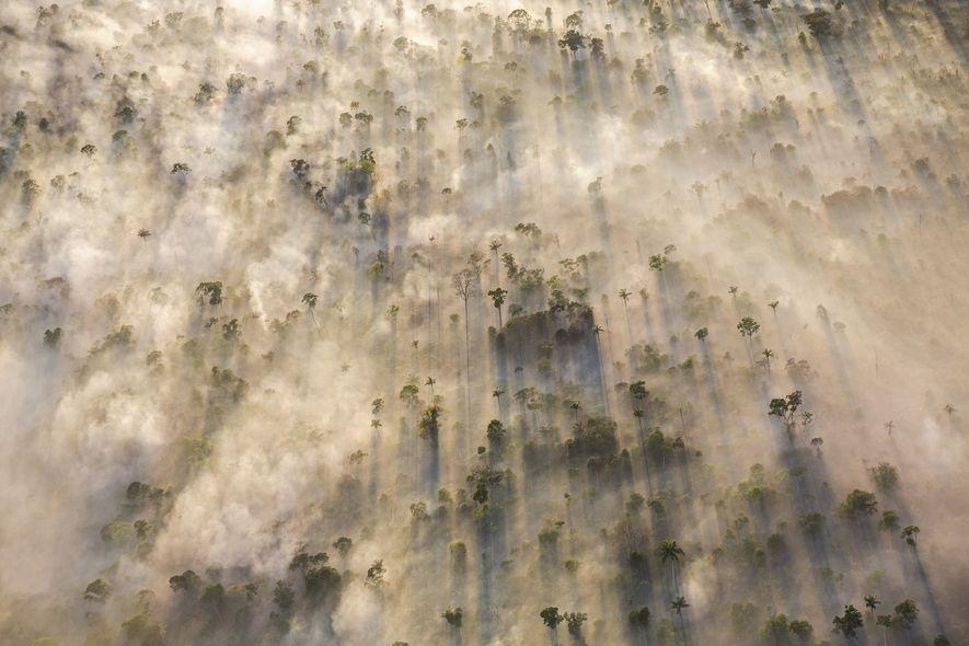 Fumaça proveniente de queimada de árvores encobre trecho da floresta Amazônica no Mato Grosso. Em pouco ...