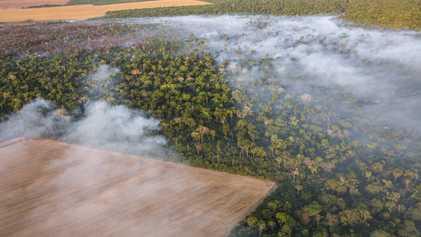 Desmatamento na Amazônia atinge maior índice desde 2008 – 7,9 mil km²