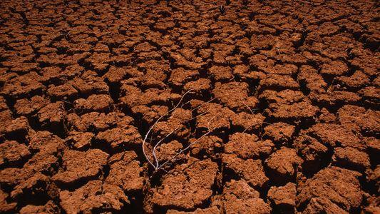 """Brasil e grandes emissores precisam agir para evitar """"apartheid climático"""", diz ONU"""