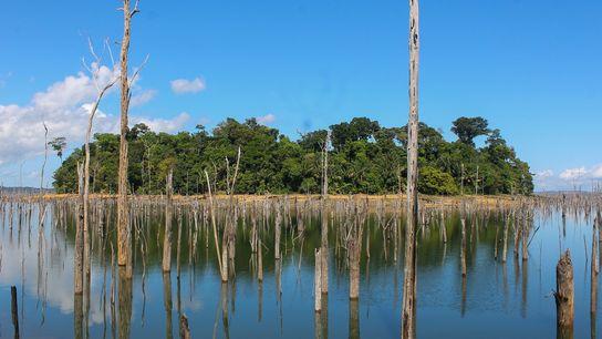 A construção de novas usinas hidrelétricas no alto Tapajós (MT) exige um amplo planejamento para preservar ...