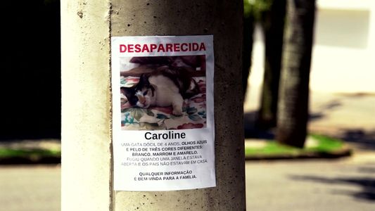 Radar Pet: Caroline