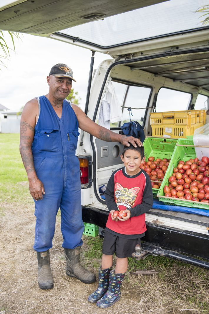 frutas e verduras nova zelandia