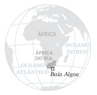 crise-aves-marinhas-africa-do-sul-baia-algoa