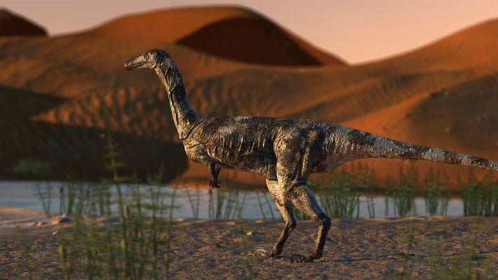 Fóssil de dinossauro recém-descoberto é o terópode mais bem preservado do Brasil