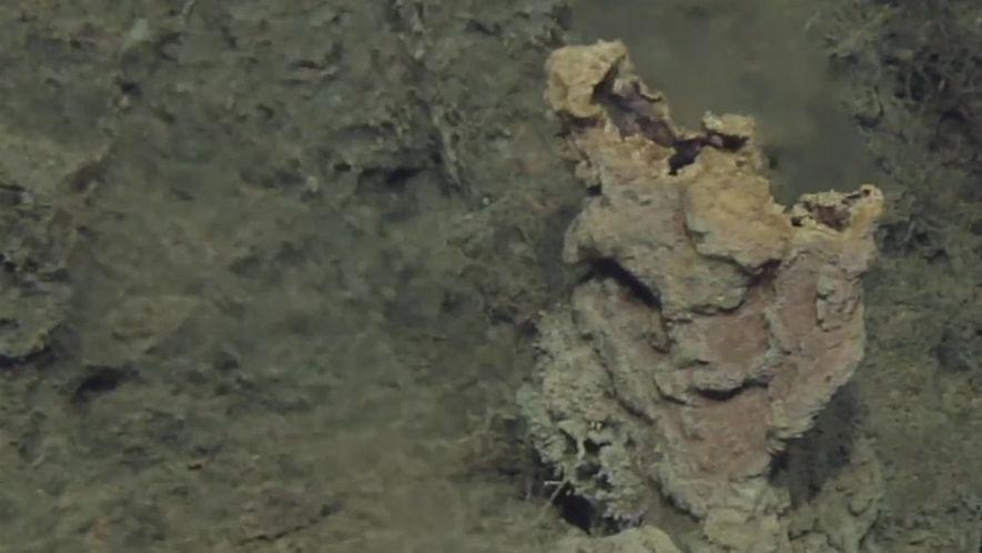 Aberturas hidrotermais encontradas em águas próximas da superfície