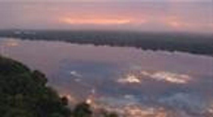 Brasil Selvagem: Biomas: Conheça a Amazônia