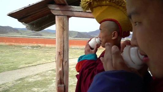 """Veja como monges """"millenials"""" se adaptam ao mundo moderno"""