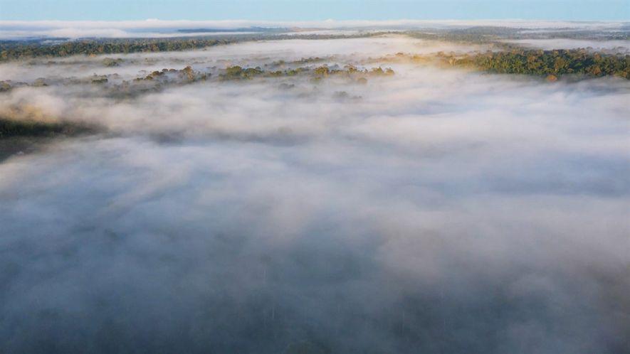 Brasil Selvagem: Biomas - Os rios voadores da Amazônia