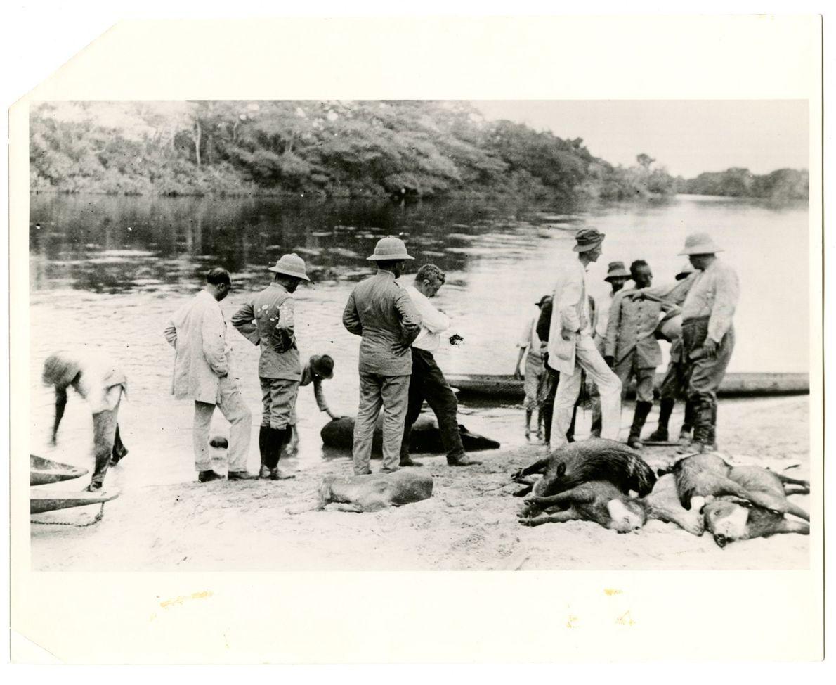 Expedição Rondon-Roosevelt.