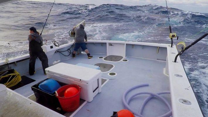 Temporada de Pesca: Norte X Sul: Nova temporada