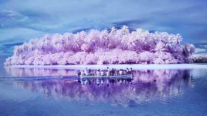 Na Ilha dos Daltônicos, o paraíso tem um tom diferente
