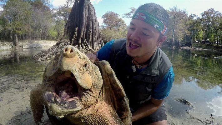 Indomável com Filipe DeAndrade: Tartaruga Marinha