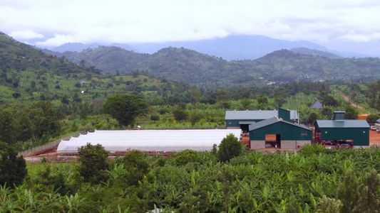 Bugoye, Uganda