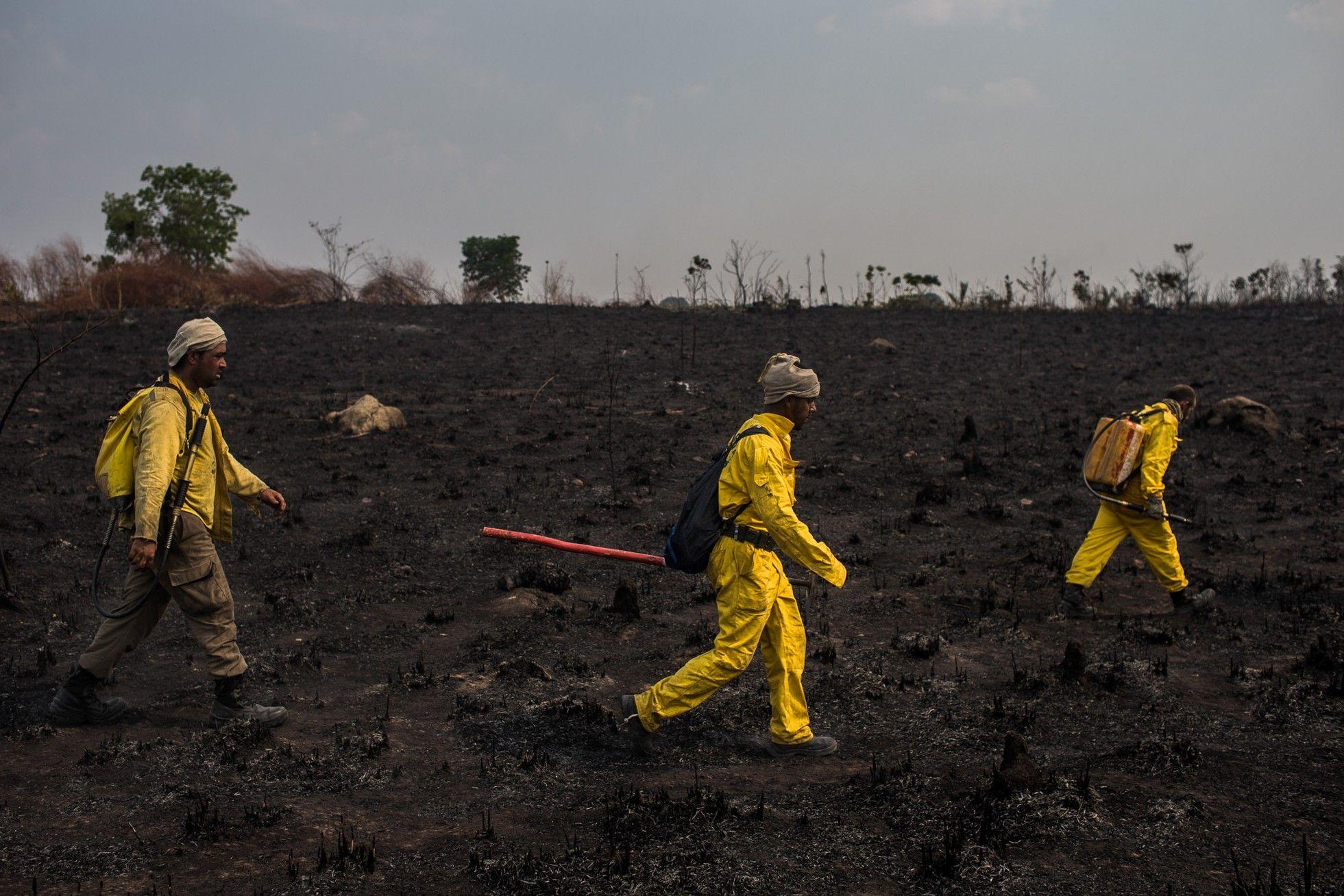 Chapada dos Veadeiros – antes e depois do maior incêndio de sua história | National Geographic