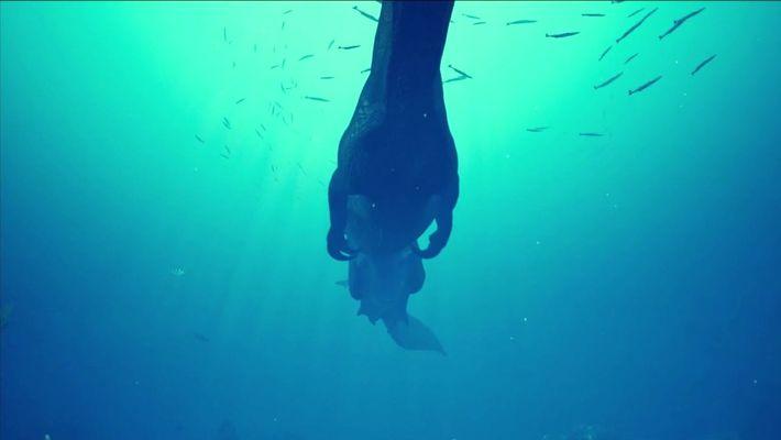 Animação em 3D mostra o comportamento do Spinosaurus embaixo d'água