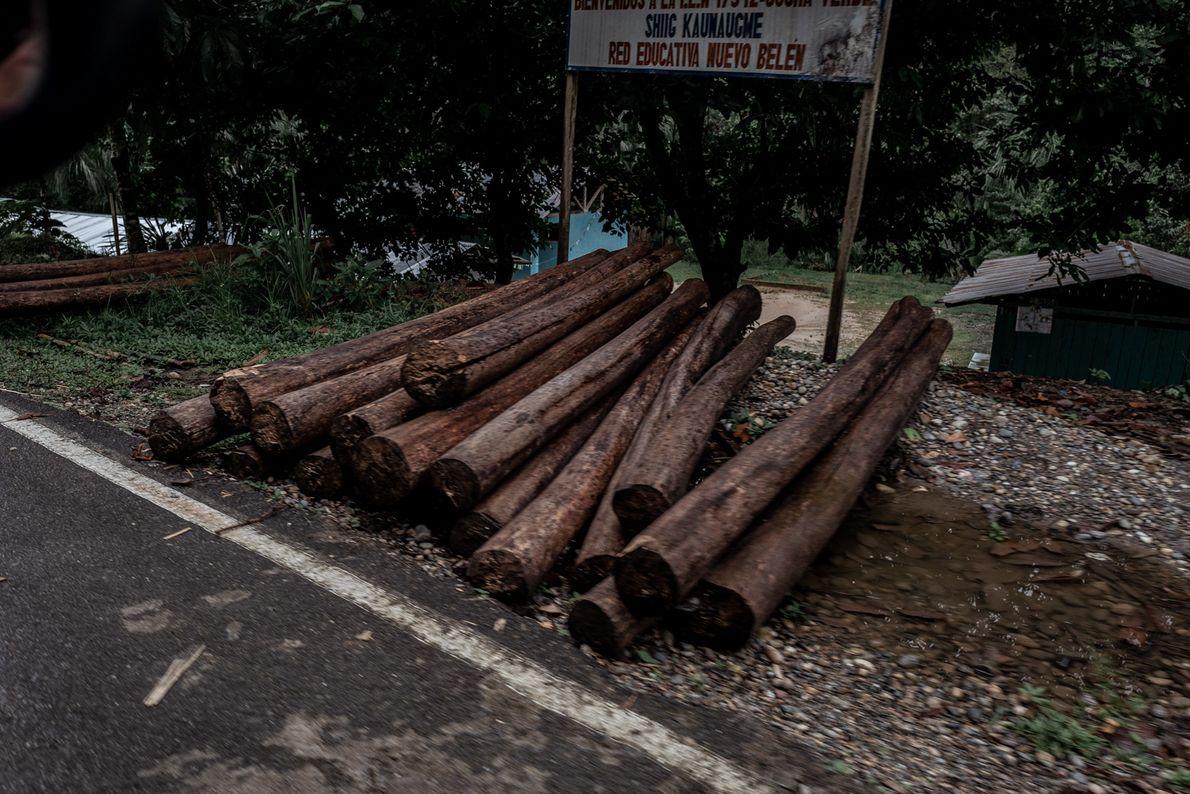 Fora do território wampís, na beira da estrada, pode-se notar o comércio de madeira ilegal em ...