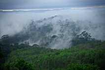 A região às margens do rio Araguari, que corta o Amapá de oeste a leste, era ...