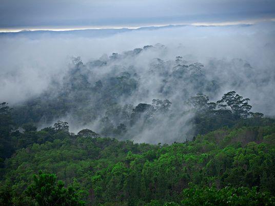 Do Caribe ao Xingu – Amapá guarda vestígios do processo de ocupação da Amazônia