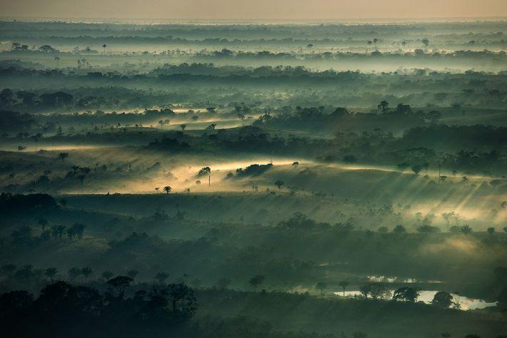 Amazonia acre nevoa neblina
