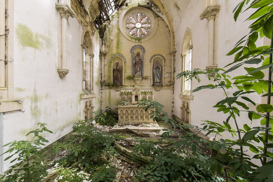 Veja como a natureza reivindicou esses lugares abandonados