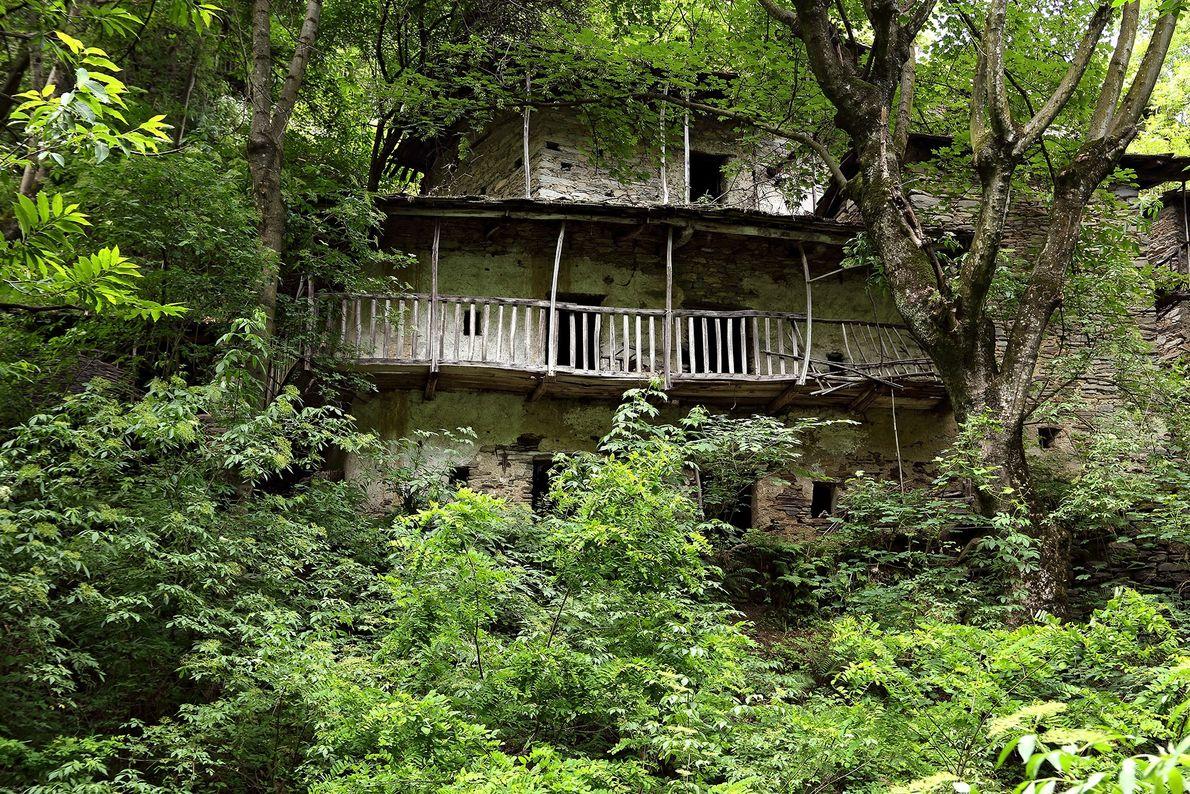 A vegetação toma uma casa fantasma na região de Piemonte, no noroeste da Itália.