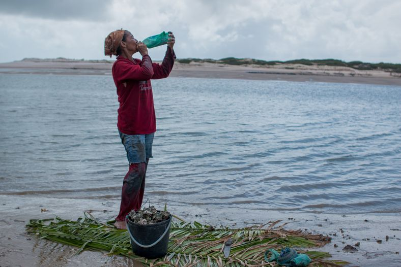 Habitante da comunidade Mamuna coleta ostras. A comunidade fica a 35 km do centro de Alcântara ...