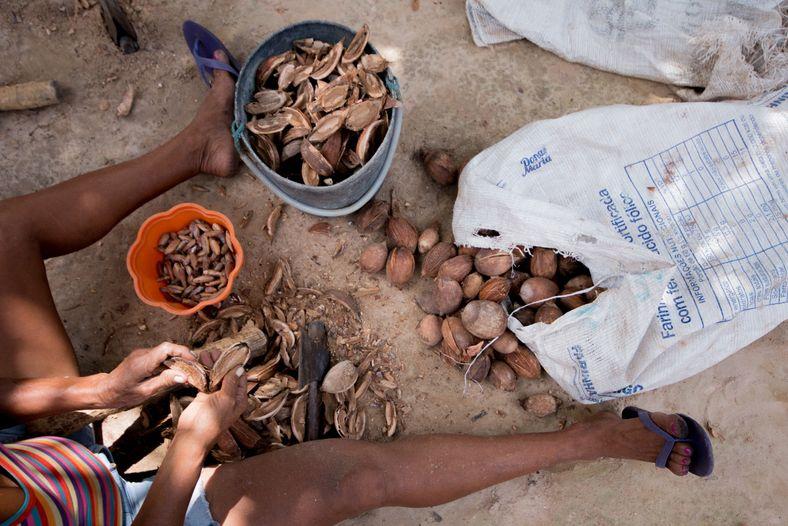 Mulher processa a castanha de babaçu na comunidade Mamuna, a 35 km do centro de Alcântara. ...