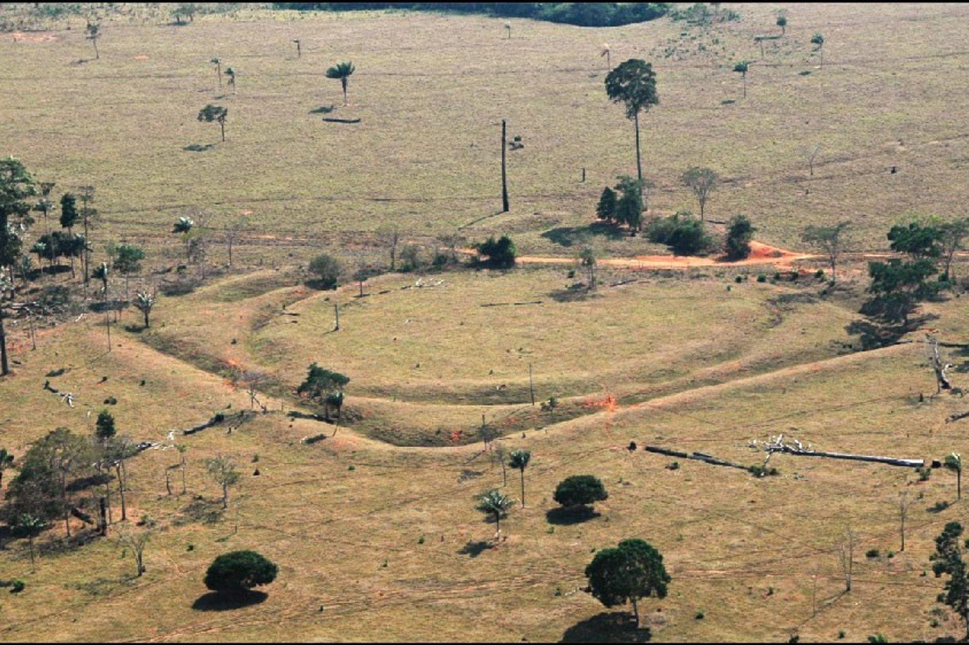 Geoglifos no sul da Amazônia são evidências de uma antiga população próspera.
