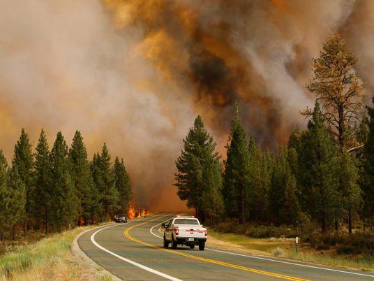 Fumaça de incêndios florestais nos EUA é mais tóxica do que se pensava
