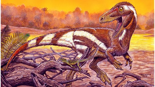Ilustração aponta como seria o Aratasaurus museunacionali, um terópode de médio porte possivelmente distribuído pelo que ...