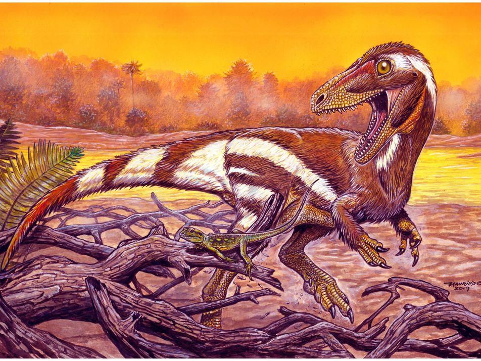 Dinossauro 'cearense' batizado em homenagem ao Museu Nacional tem um parente na China