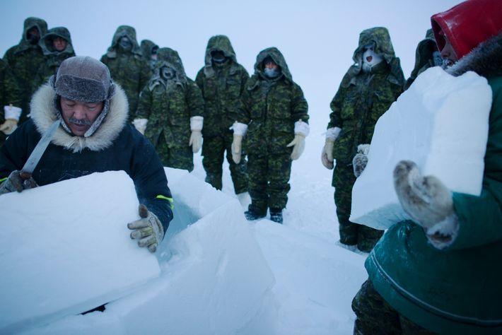 Nas gélidas temperaturas do Alto Ártico, sobreviver significa encontrar abrigo—ou construir um. Aqui, no curso de ...
