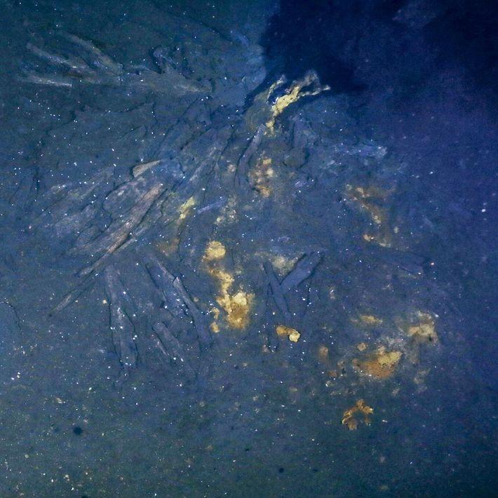 Na região de Aurora, uma chaminé de aproximadamente noventa centímetros solta fumaça preta (canto superior direito) ...